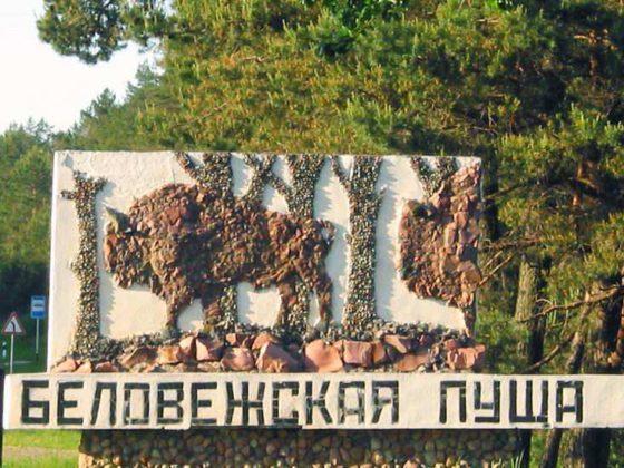 Экскурсии в Беловежскую Пущу